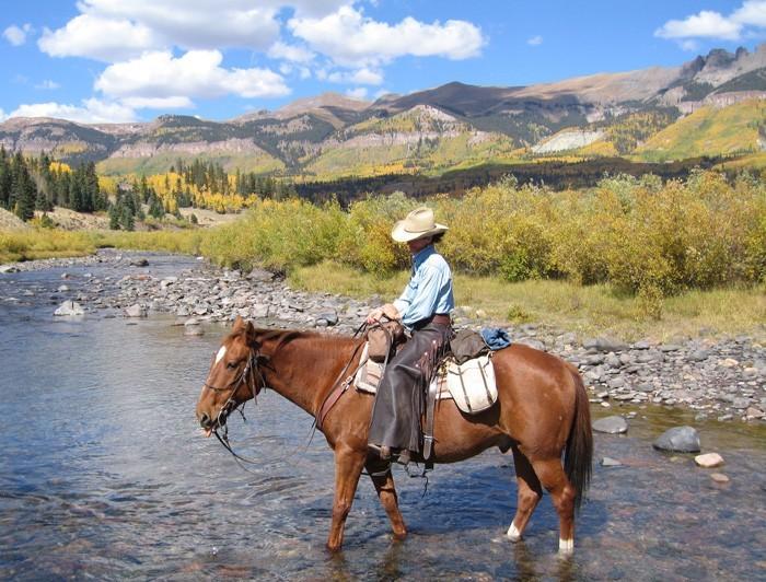 Horseback Riding - Gin Getz