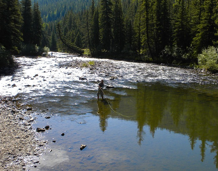 Fly fishing float fishing creeks rivers and lakes for Colorado fish stocking