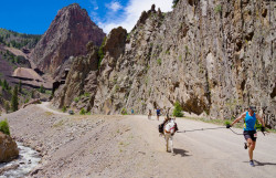 Creede Burro Race BachelorLoop Bob Seago
