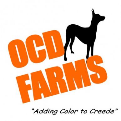 ocd-logo